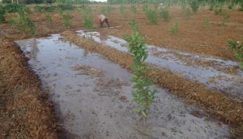 somalia_clean_water_3